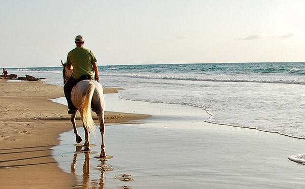 equitation-activite-location-ile-de-re